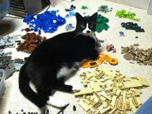 lego_cat